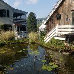 lily garden inn
